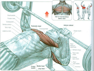 Four benching mistakes